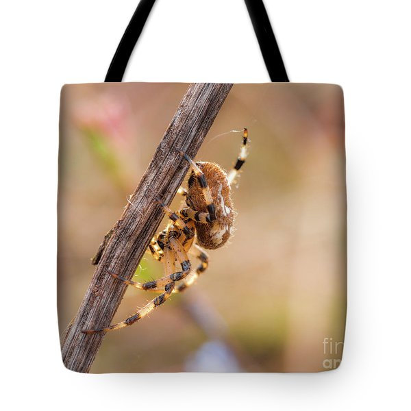 Colorful Spider Hanging From The Stick  Tote Bag