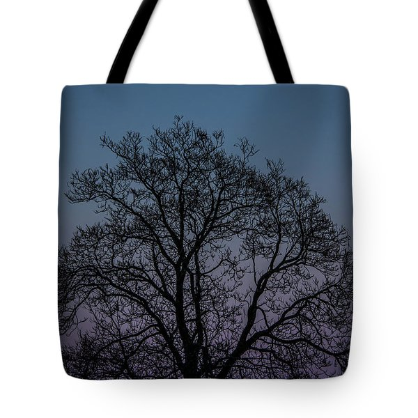 Tote Bag featuring the photograph Colorful Subtle Silhouette by Darryl Hendricks