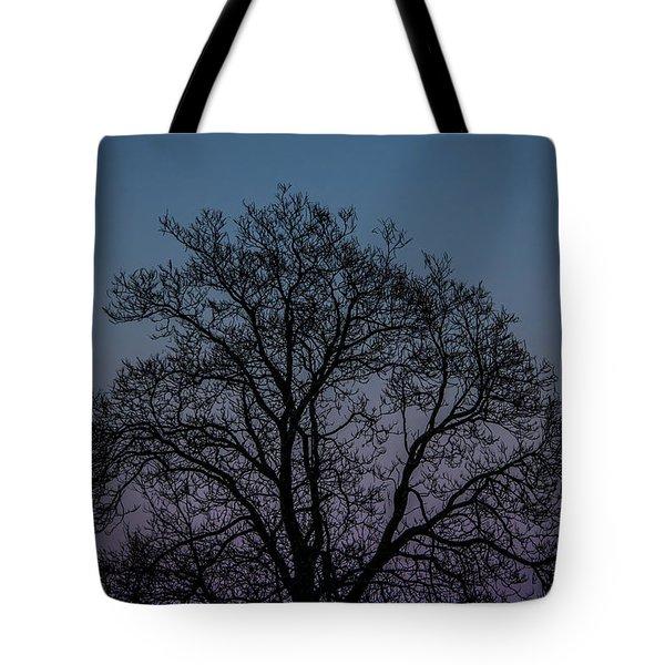 Colorful Subtle Silhouette Tote Bag