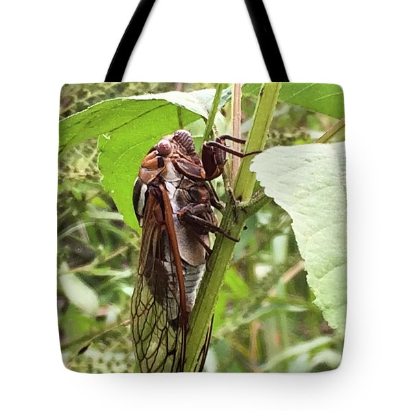 Colorful Summer Cicada Tote Bag