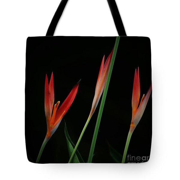 Colorful Trio Tote Bag by Pamela Blizzard