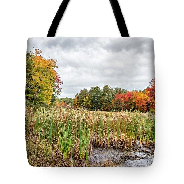 Colorful Webster Bog Tote Bag