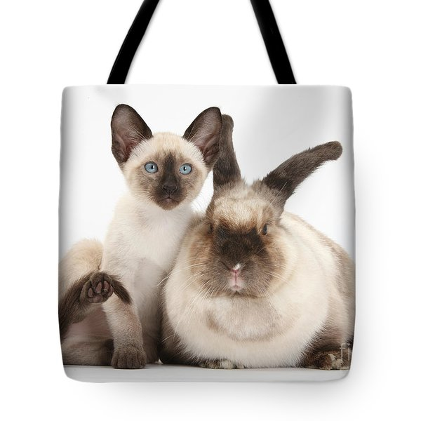 Colorpoint Rabbit And Siamese Kitten Tote Bag by Mark Taylor