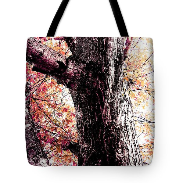 Colors And Texture  Tote Bag