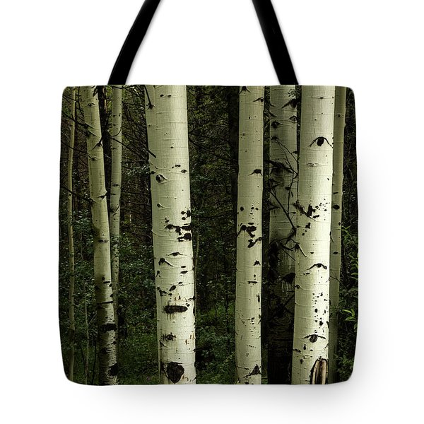 Tote Bag featuring the photograph Colors And Texture Of A Forest Portrait by James BO Insogna