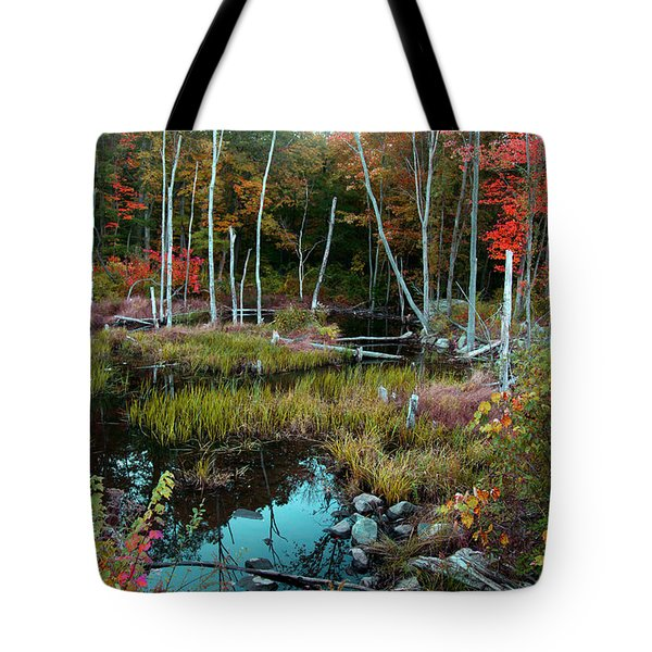 Colors By The Stream Tote Bag by Joseph G Holland