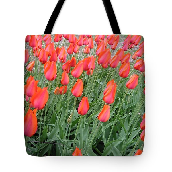 Tote Bag featuring the photograph Colors In Motion by Roxy Riou