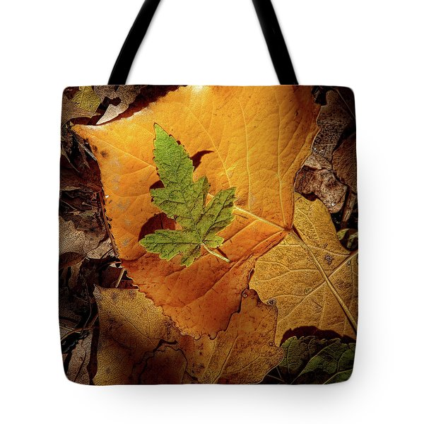 Tote Bag featuring the photograph Colors Of Autumn by Marie Leslie