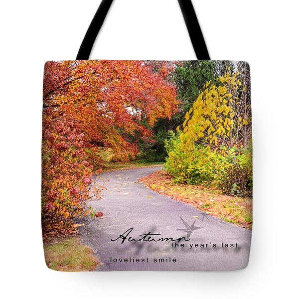 Tote Bag featuring the photograph Colors Of Autumn by Mary Timman
