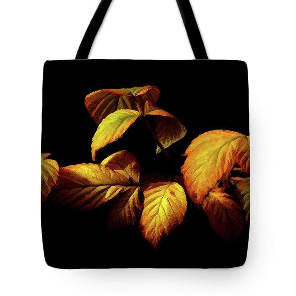 Colors Of Autumn Memories  Tote Bag by David Dehner