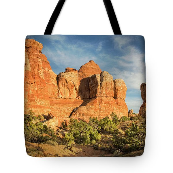 Colors Of Chesler Park Tote Bag