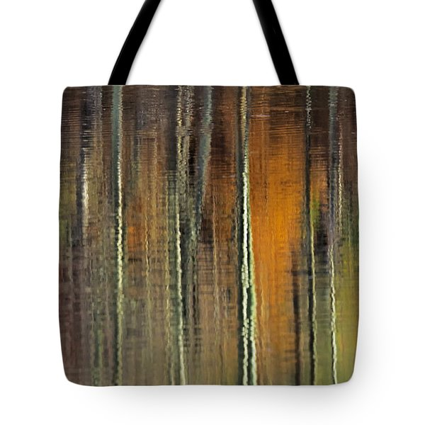 Colors Of Fall 06 Tote Bag