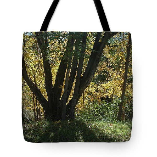 Colors Of Fall 2 Tote Bag