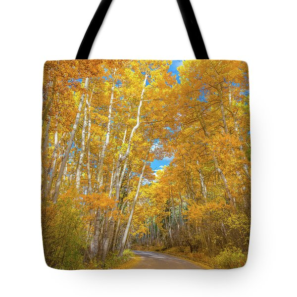 Tote Bag featuring the photograph Colors Of Fall by Darren White