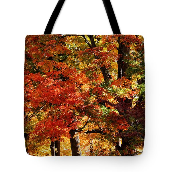 Tote Bag featuring the photograph Colors Of Fall by William Selander