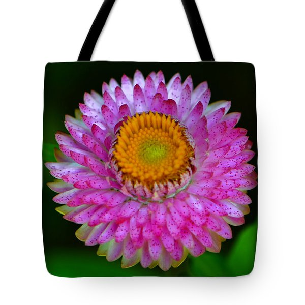 Tote Bag featuring the photograph Colors Of Nature - Grand Opening 001 by George Bostian