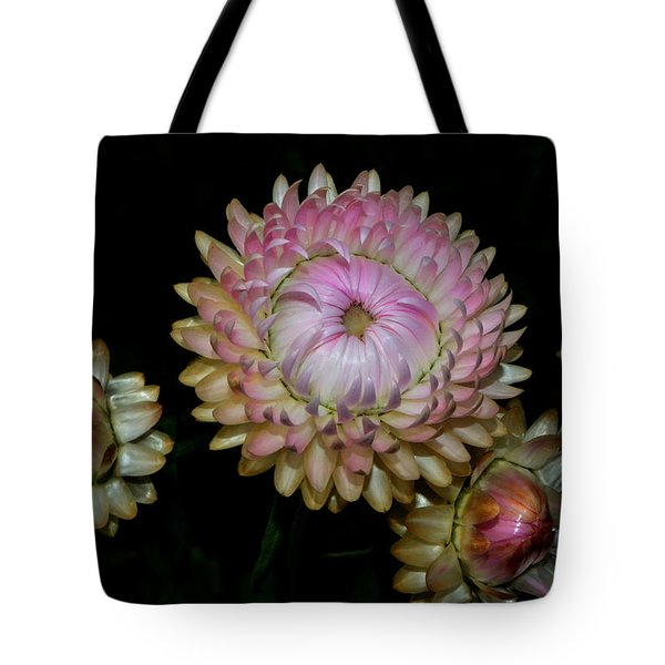 Tote Bag featuring the photograph Colors Of Nature - Grand Opening Stages 001 by George Bostian