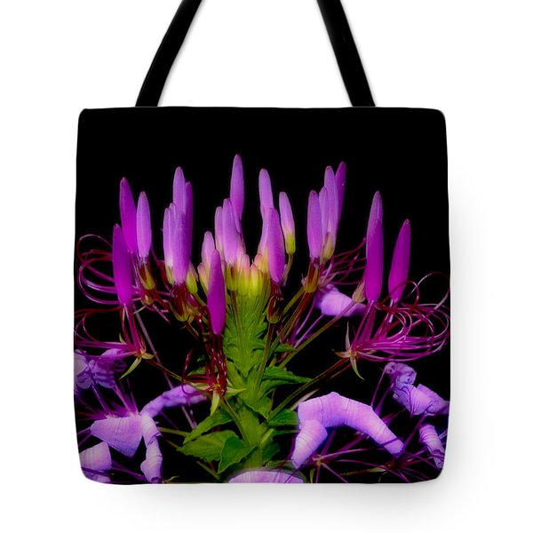 Tote Bag featuring the photograph Colors Of Nature - Lavender 001 by George Bostian