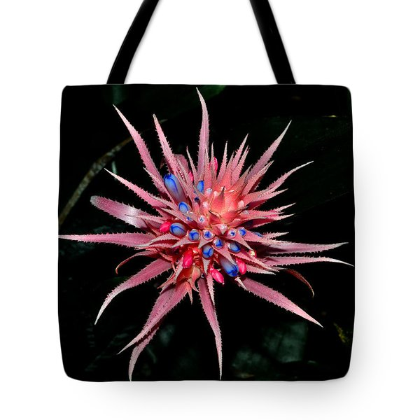 Tote Bag featuring the photograph Colors Of Nature - Pink And Blue Bromelia by George Bostian