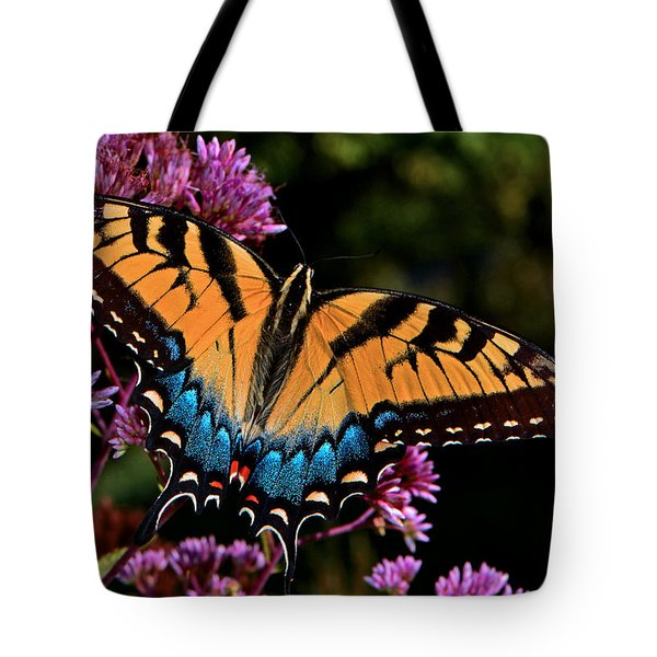 Colors Of Nature - Swallowtail Butterfly 004 Tote Bag