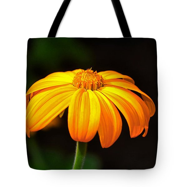 Tote Bag featuring the photograph Colors Of Nature - Yellow Flower 020 by George Bostian
