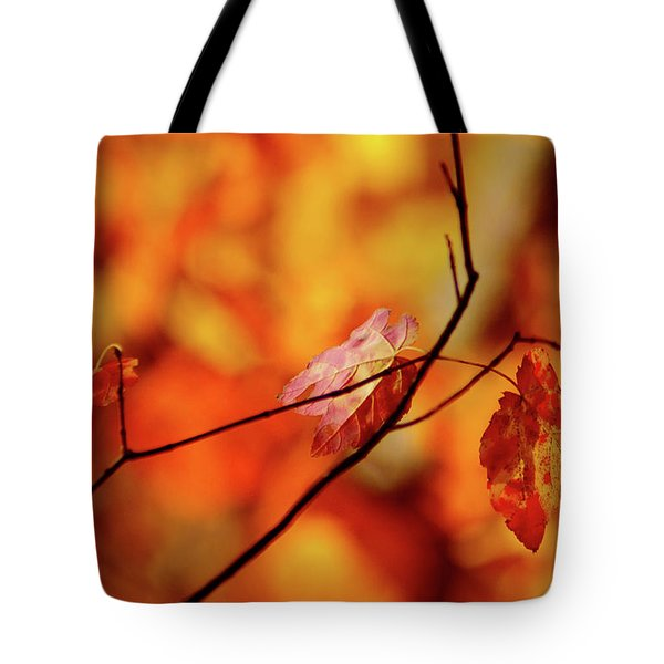 Tote Bag featuring the photograph Colors by Robert Geary
