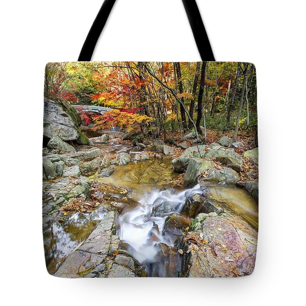 Colour Of Autumn Tote Bag