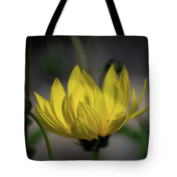 Colour Of Sun Tote Bag