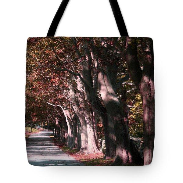 Colt State Park Bristol Rhode Island Tote Bag by Tom Prendergast