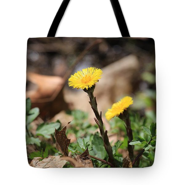 Coltsfoot Tote Bag