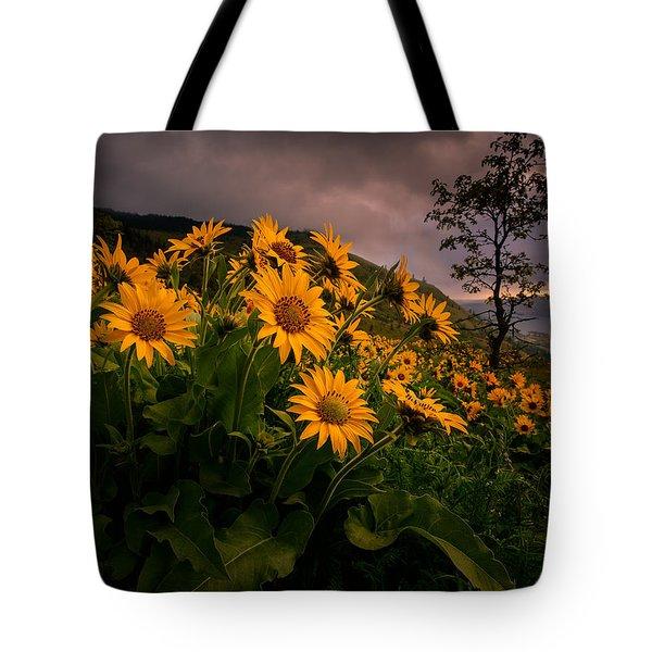 Columbia Gorge Joy Tote Bag
