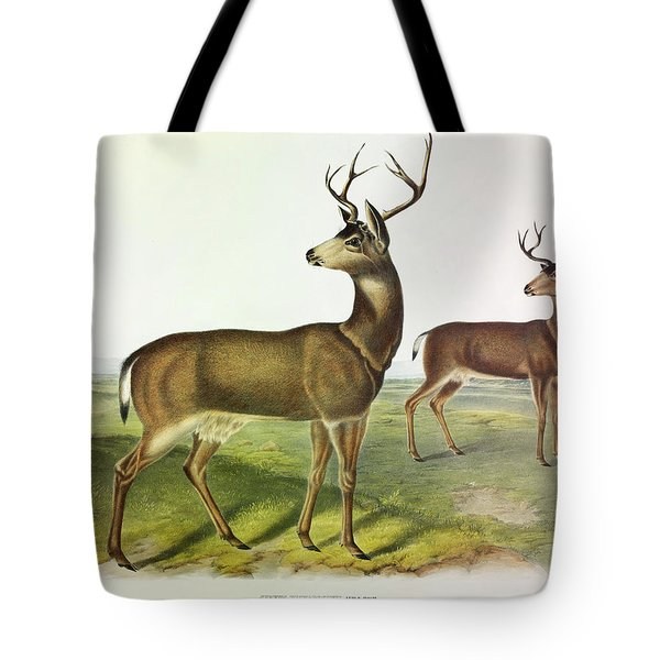 Columbian Black-tailed Deer Tote Bag