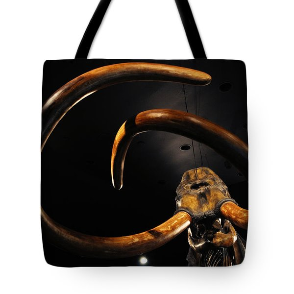 Tote Bag featuring the photograph Columbian Mammoth La Brea Tar Pits by Kyle Hanson