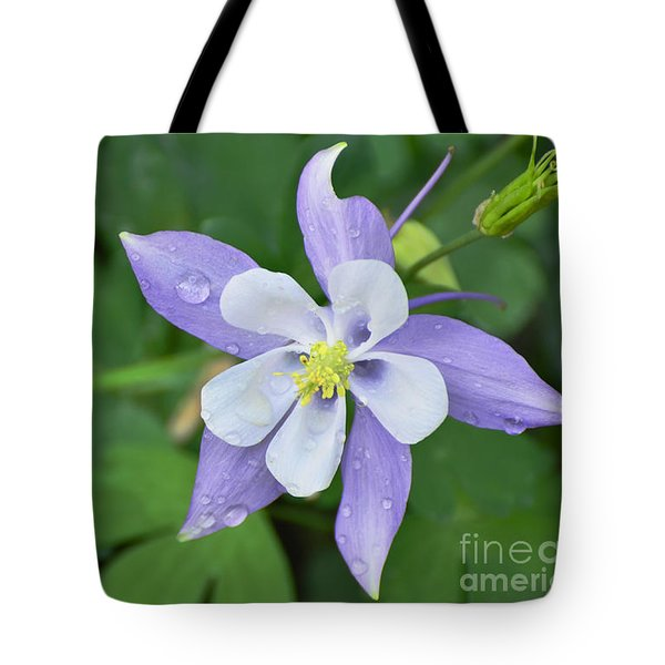 Columbine After A Shower Tote Bag