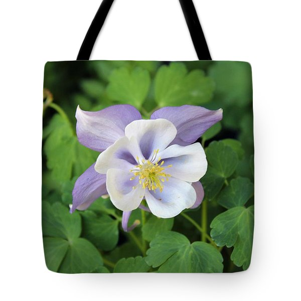 Columbine At Glen Magna Farms Tote Bag