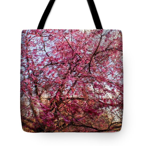 Tote Bag featuring the photograph Columnar Sargent Cherry 1 by Bernhart Hochleitner
