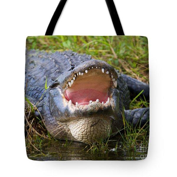 Come A Bit Closer Tote Bag