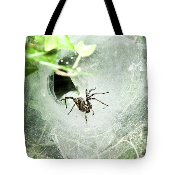 Come Into My Lair Tote Bag