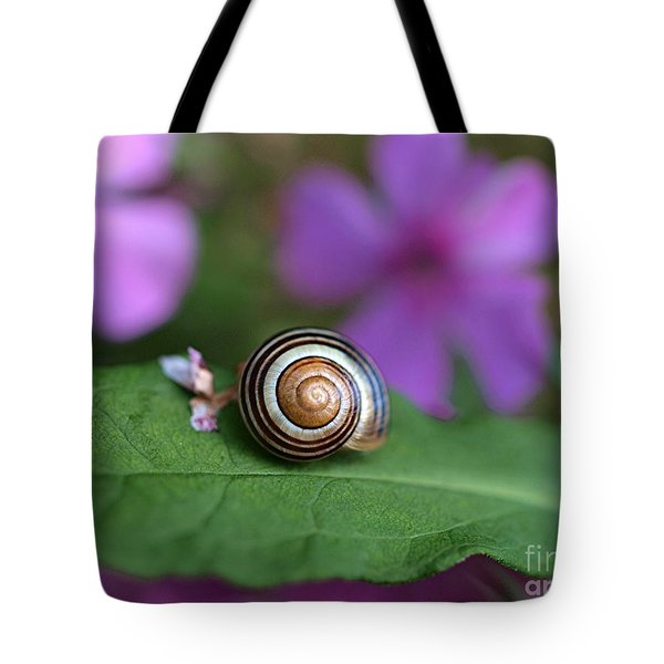 Come Out Of Your Shell Tote Bag by Susan Dimitrakopoulos