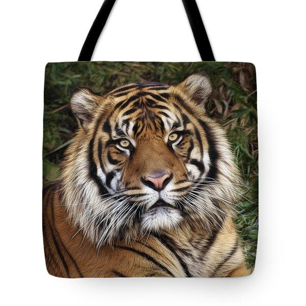 Come Pet Me Tote Bag