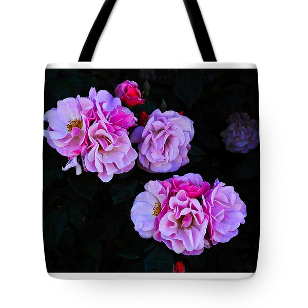 Tote Bag featuring the photograph Come To Me by Karo Evans