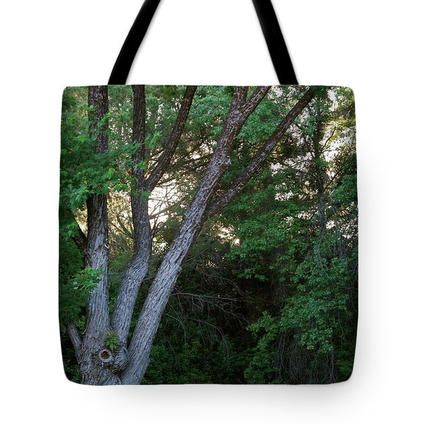 Comes The Dawn Tote Bag