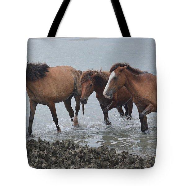 Coming Ashore Tote Bag