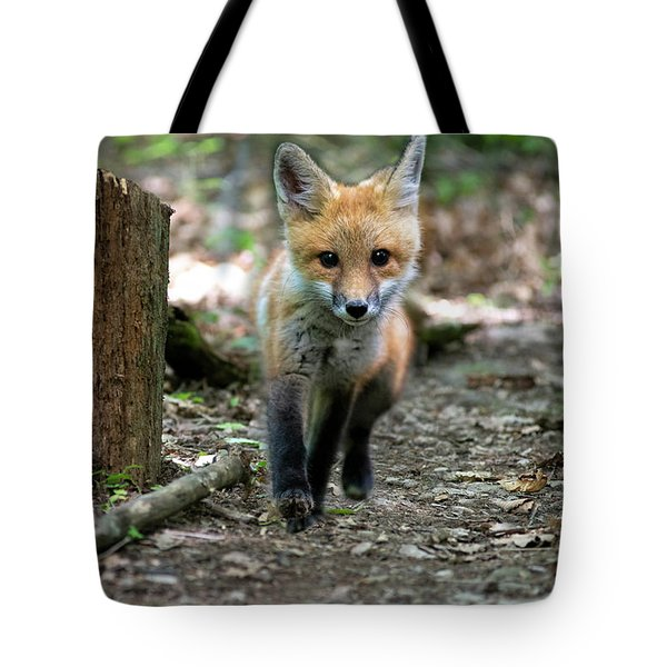 Coming Down The Path Tote Bag