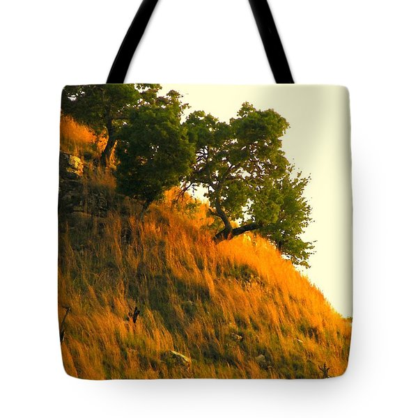 Tote Bag featuring the photograph Coming Home Again by Joe Jake Pratt