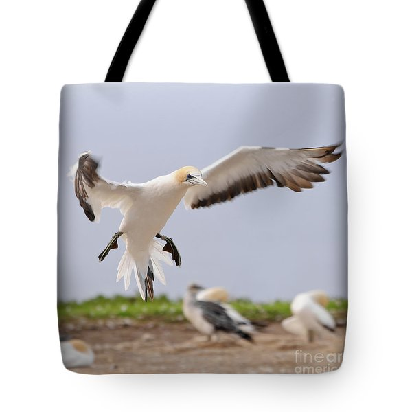 Tote Bag featuring the photograph Coming In To Land by Werner Padarin