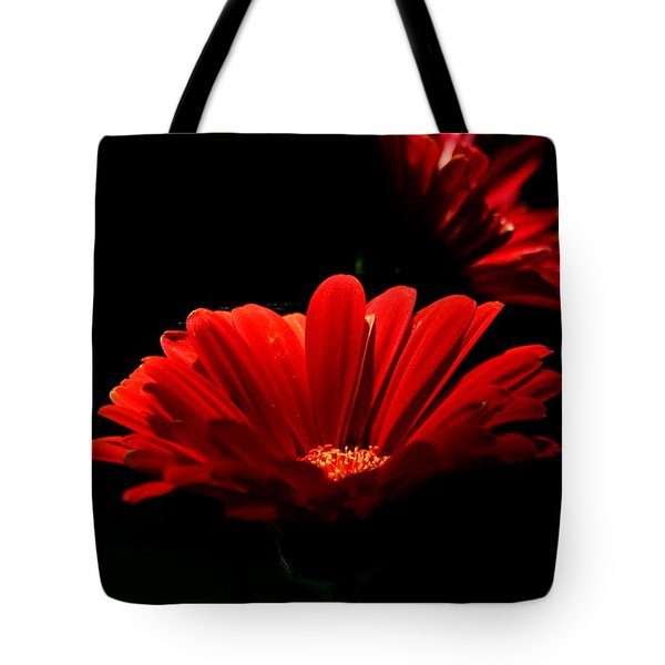 Coming In To The Light Tote Bag