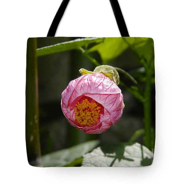 Coming Out Tote Bag by David Lee Thompson