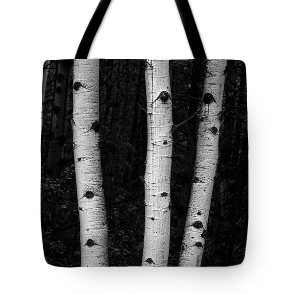 Tote Bag featuring the photograph Coming Out Of Darkness by James BO Insogna