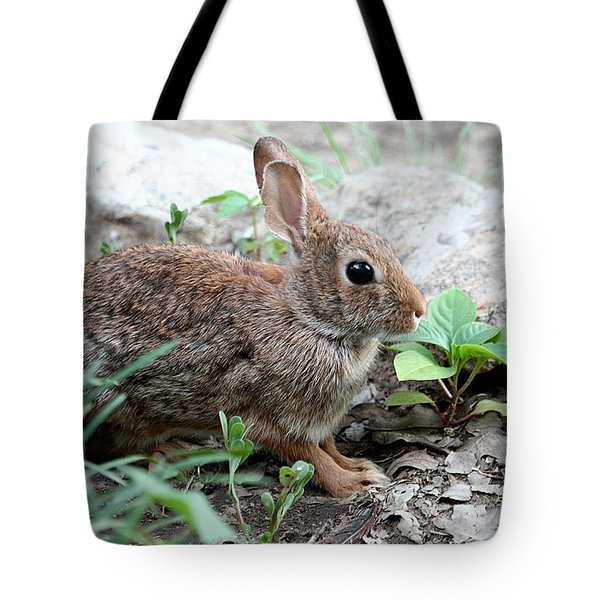 Tote Bag featuring the photograph Coming Out Of Hiding by Sheila Brown